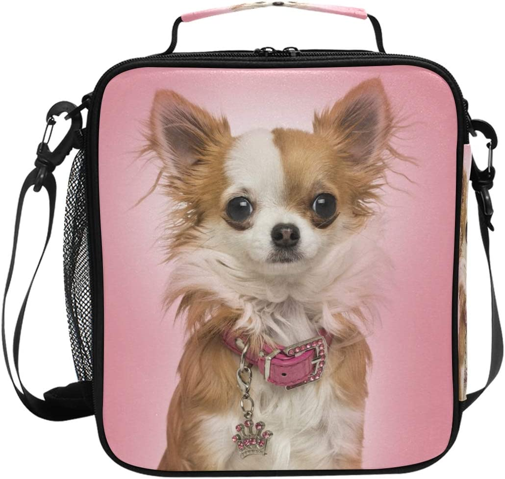 LunchBaggg Crazy Chihuahua Lady Dog Mom Outdoor Backpack Water Resistant Fashionable for Women