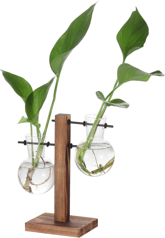 Glass Planter Hydroponics Vase, Desktop Air Planter Bulb Glass Vase Plant Terrarium with Wooden Stand for Hydroponics Plants Home Office Garden Decoration (2 Bulb Vase)