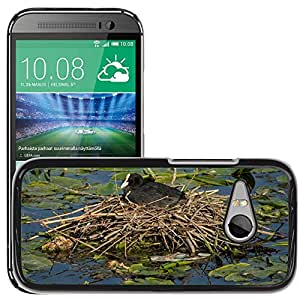 Hot Style Cell Phone PC Hard Case Cover // M00115961 Eurasian Coot Bird Fowl Nest Pond // HTC One Mini 2 / M8 MINI / (Not Fits M8)