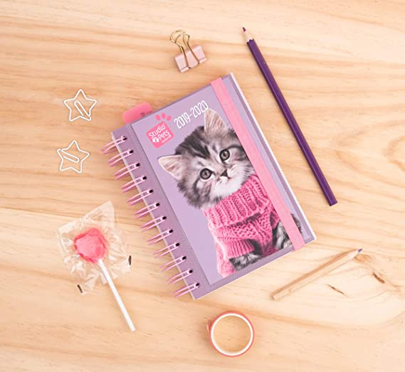 Amazon.com : School Diary 2019/2020 Day Page S Studio Pets ...