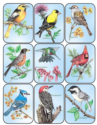 Paper Magic 650630 Eureka Birds Stickers Paper Magic Group Inc.
