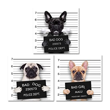 Cool Wall Canvas Art Bad Dog Collection Ideal For Home Or Office Wall Decor Set Of 3 Paintings 48 X 16 Overall