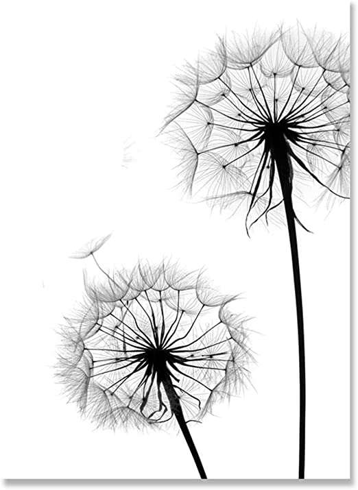 Mono /& Gold Floral New York Wall Art Pictures Canvas Home Decor Accessories