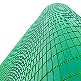 solardiamond Window Film Privacy Mirror One Way Heat Control Sun Blocking Insulation Film Decorative Residential Window Tint Roll For Home Office | Self-Adhesive Reflective Silver Green 40inX10ft