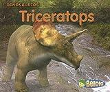Triceratops, Daniel Nunn, 1432905317