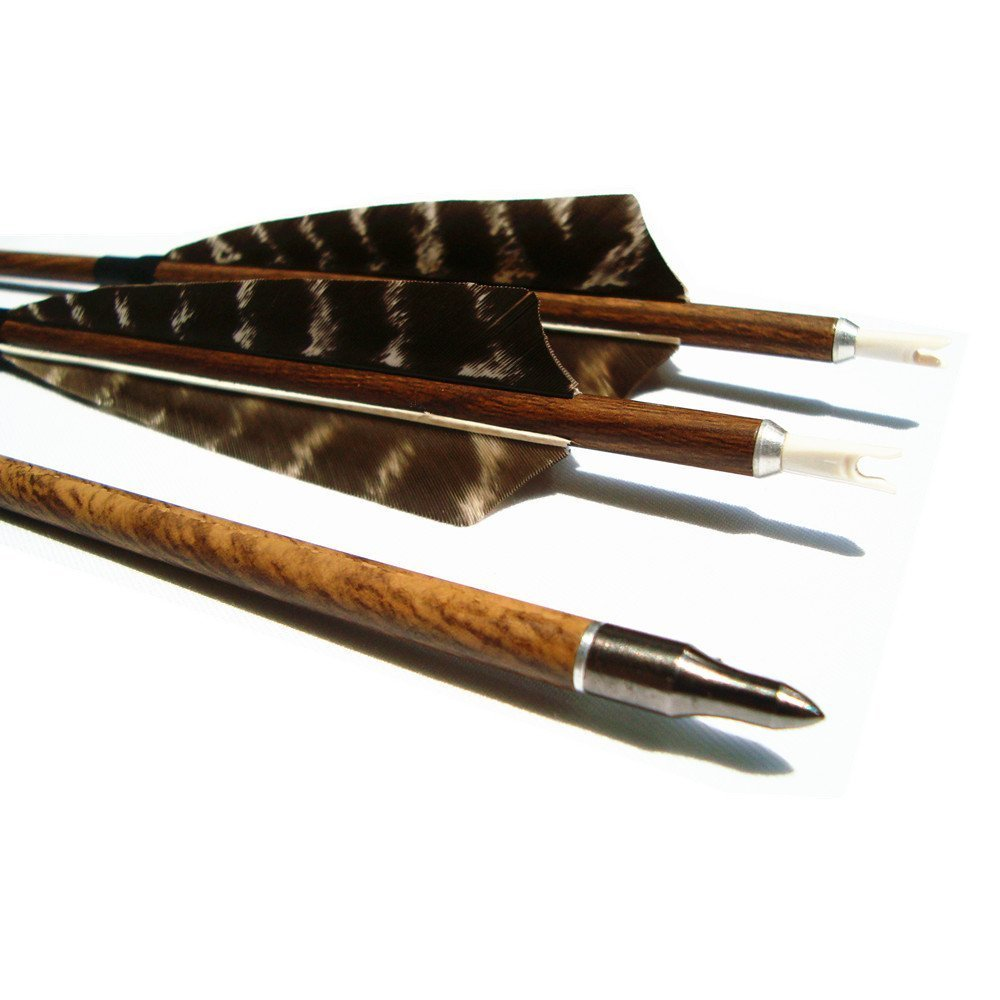 Archery Hunting Carbon Fiber Arrows, MS Carbon Fiber Arrow Spine 400 with Replacement Screw-in 100 Grain Points and 4 Inch Real Feather for Compound Bow Recurve and Long Bow 6 Pack (31inch)