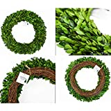 Preserved Boxwood Wreath Year Round Green Wreath