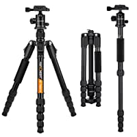 """K&F Concept 53"""" Professional Compact Portable Travel Outdoor Lightweight Aluminum DSLR Camera Tripod Monopod 5 Sections with 3/8"""" Exchangeable 360 Degree Ball Head and Quick Release Plate TM2515B"""