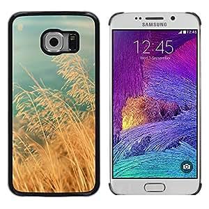 LECELL--Funda protectora / Cubierta / Piel For Samsung Galaxy S6 EDGE SM-G925 -- Field Golden Brown Sun Fall Teal --