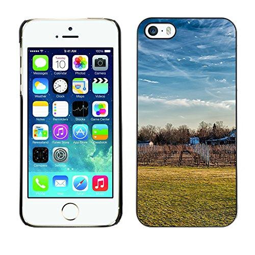 Premio Sottile Slim Cassa Custodia Case Cover Shell // F00032412 La chute de la vigne // Apple iPhone 5 5S 5G