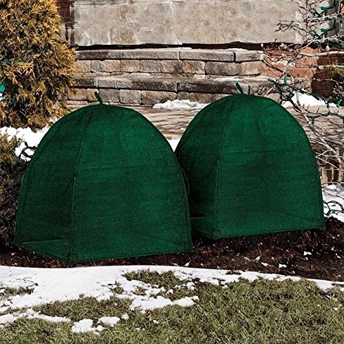 NuVue 20253 36'' x 36'' x 38'' Green Frost Proof Winter Shrub Protector Covers - Quantity 6 by Nuvue (Image #2)