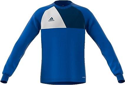 adidas Assita Goalkeeper Jersey Longsleeve - Camiseta Portero Niños: Amazon.es: Deportes y aire libre