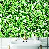 "RoomMates RMK11045WP Palm Leaf Peel and Stick Wallpaper, 20.5"" x 16.5 feet, Green"