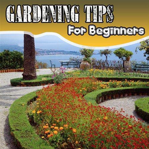 Composting Bins and Fertilizer Options (Beginner Composting)