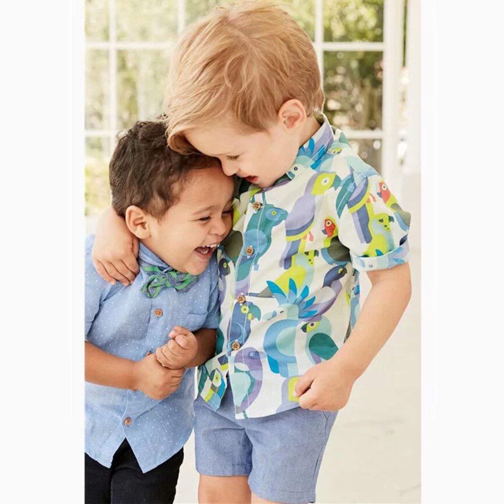 Banibear Toddler Boys 2 Pieces Hawaiian Shorts Set 2-7 Years