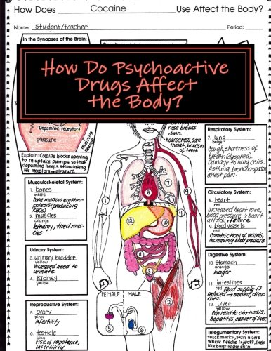 How Do Psychoactive Drugs Affect the Body?: Understanding How Drugs Affect the Synapse and Body Organs ebook