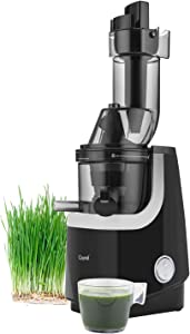 Caynel Whole Slow Juicer, Masticating Cold Press Juicer Machine Easy to Clean, Higher Nutrients and Vitamins, Eastman Tritan Material BPA-Free, Ultra Efficient 200W, 50RPMs, Ceramic (Black)