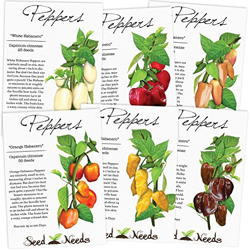 habanero-pepper-seed-packet-assortment-6-individual-seed-packets-non-gmo-seeds-by-seed-needs