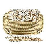 TOPCHANCES Womens Evening Crystal Cocktail Wedding Party Handbag Clutch Purse Wallet Elegant Evening Clutch Bags Rhinestone Floral Purses Bling Hard Box (Luxury Golden)