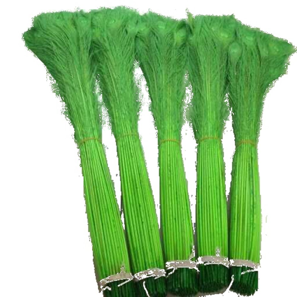 Shekyeon Lime Green 70-80cm 28-32inch Natural Dyed Peacock Feather Table Decoration Festival Party Home Supplies Pack of 100
