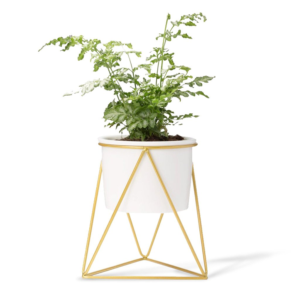 Mkono Ceramic Planter with Metal Stand Tabletop Succulent Pot Modern Plant Holder by Mkono