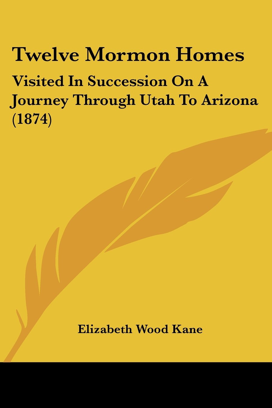 Twelve Mormon Homes: Visited in Succession on a Journey Through Utah to Arizona (1874) ebook