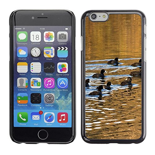 "Hülle Case Schutzhülle Cover Premium Case // F00000391 Wasserreflexionen // Apple iPhone 6 6S 6G PLUS 5.5"""