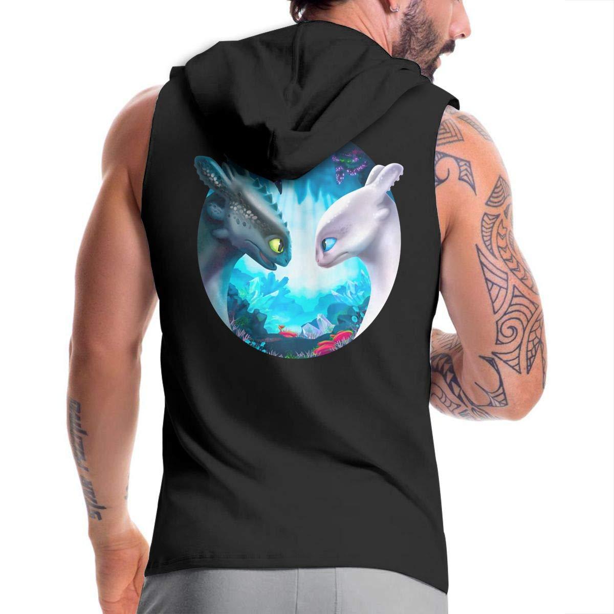 Kinggo Design Mans with Hood Bag How to Train Your Dragon The Hidden World Toothless and Light Fury Humor Zipper Sweatshirt