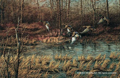 Apple River Mallards by Terry Redlin Encore Print Open Edition - Mallards By Terry