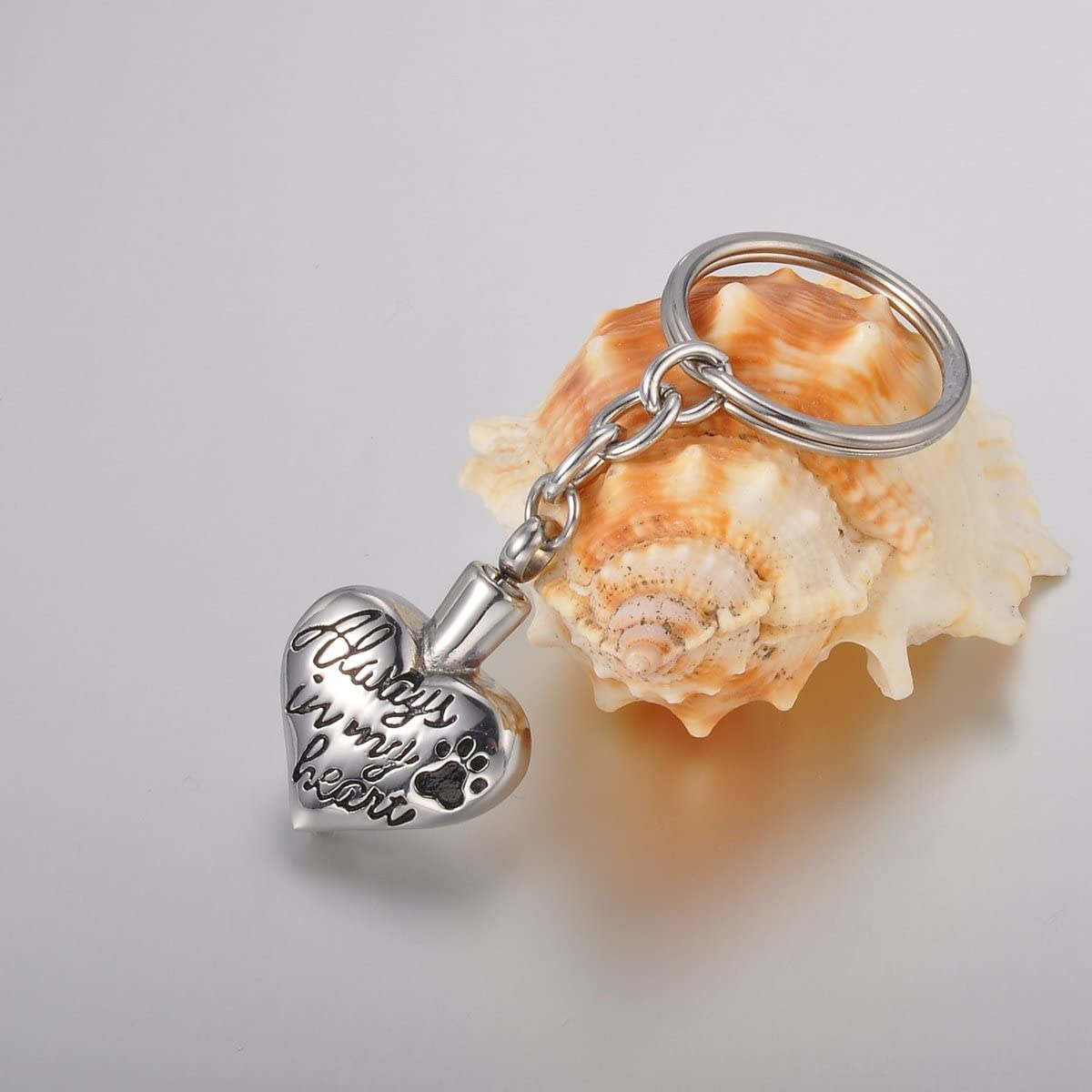 Valyria Memorial Pet//Dog Paw Keychain//Necklace Always in My Heart Pet Urn Keepsake Charm Ashes Keyring//Necklace with Engraving
