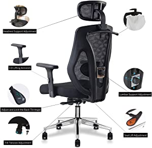 Allguest Ergonomic Adjustable Office Chair with Adjustable Lumbar Support-High Back with 5CM Thick Setting Cotton Cushion-Adjustable Head-Arm Rests,Seat Height-Reclines AG-8015FH