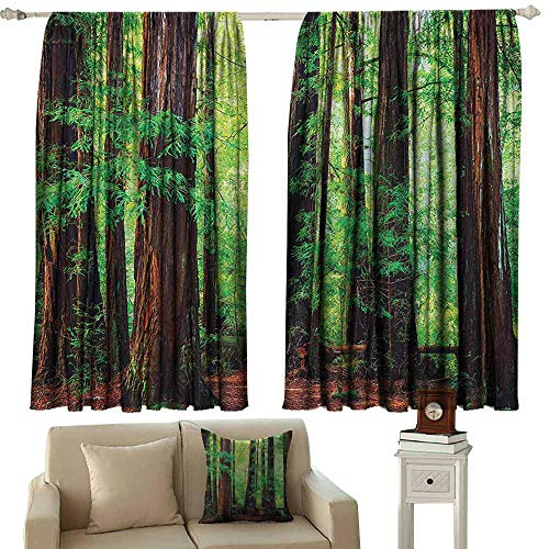 Tree Woodland Printed insulation curtain Redwood Trees Northwest Rain Forest Tropical Scenic Wild Nature Lush Branch Image Suitable for Bedroom Living Room Study, etc.72