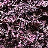 Organic Dulse, Whole, Naturally Harvested, Bay of Fundy, Nova Scotia, Non-GMO, Vegan (4 Ounces, 113 Grams)