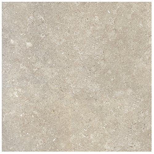 (Dal-Tile 24241P-VR02 Valor Tile, 18