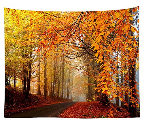 KABAKE Landscape Tapestry Autumn Season Fall Trees with Morning Frog in Forest Relaxing Art Nature Photo Home Wall Hanging Decro for Bedroom Living Room Dorm (Pattern #3, 51.2