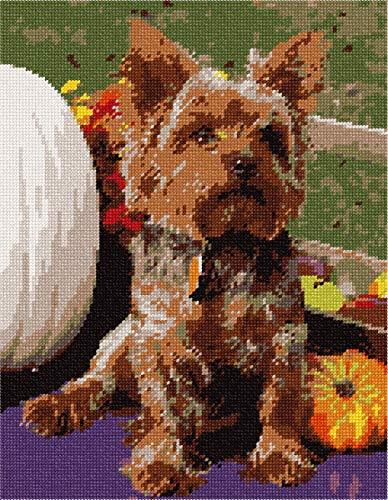(pepita Dog With Pumpkins Needlepoint Kit)