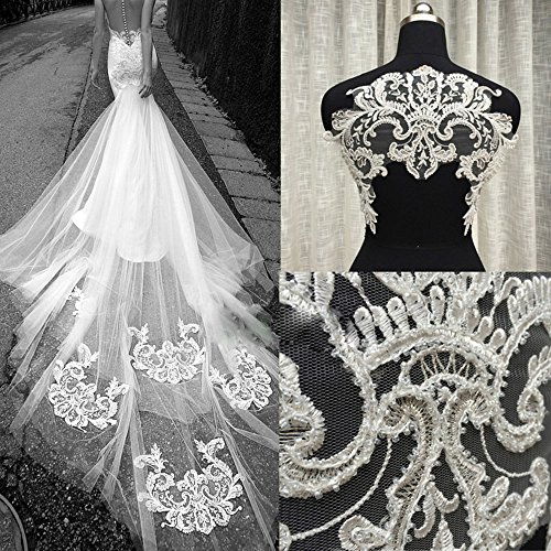 Stunning Bridal Dress Lace Applique Beading Embroider Sliver Fringe Floral Appliques Off-White Patch Motif Wedding Gown Train Addition ()