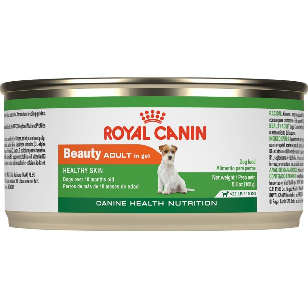 Royal Canin Junior Wet Dog Food