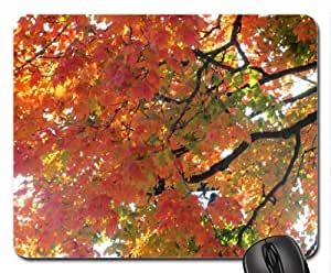 Autumn In Ohio Mouse Pad, Mousepad