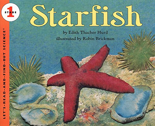 Starfish (Let