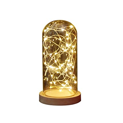 hot sale online 67999 87b7d Amazon.com: Glass Lamp Bell Display Bamboo Base String USB ...