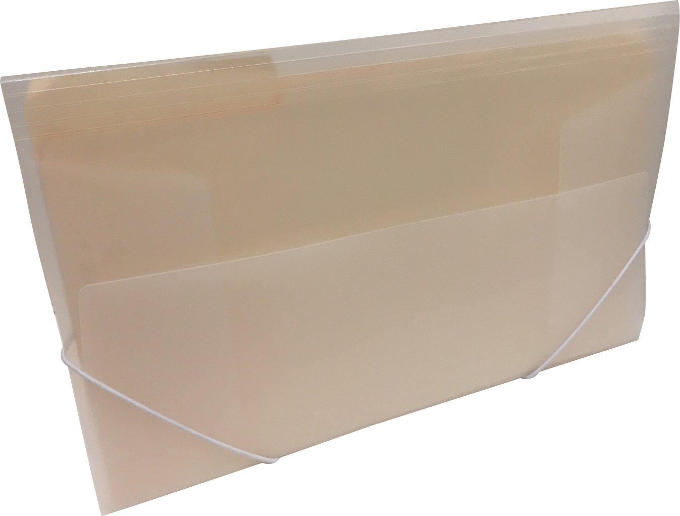 Legal Size File Folder Case with Elastic Strap Closure (2pcs) 11'' x 15'' x 1.25 Clear