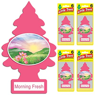 Little Trees Car Air Fresheners Morning Fresh Scent (24 Pack): Automotive