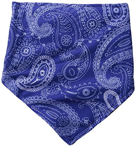 Chaos Paisley Bandana, Blue, One Size (Fleece Bandana Lined)
