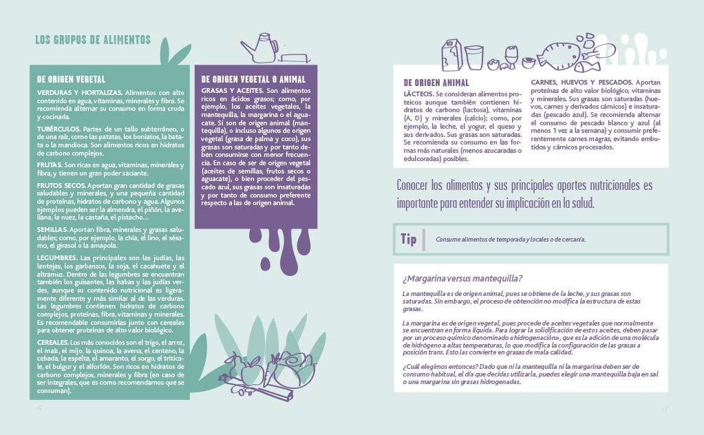 Diario saludable desde la psiconutrición Libro práctico ...