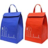 Earthwise Insulated Lunch Bag Tote Box - Fully Lined WATERPROOF interior w/ WATER BOTTLE HOLDER (2 Pack)