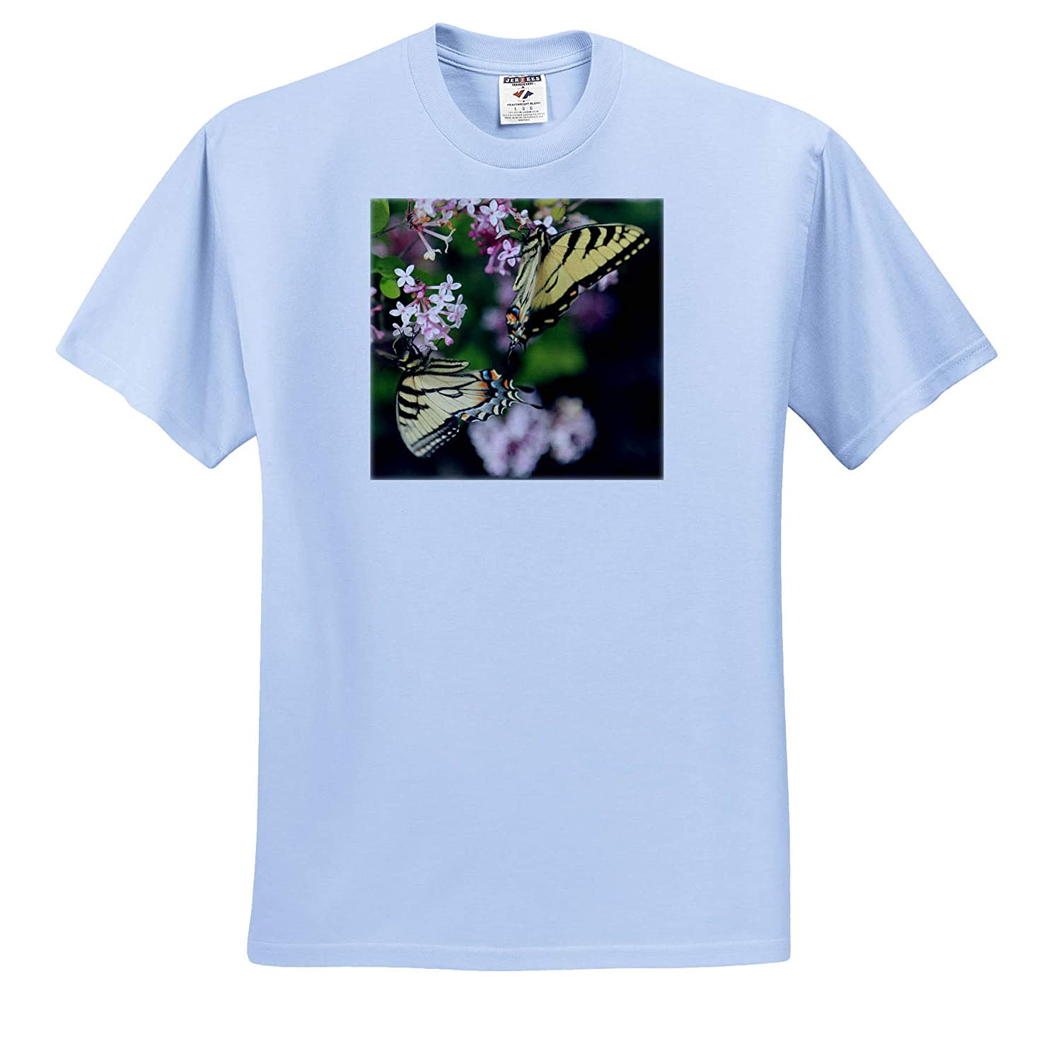 Nature 3dRose Stamp City Photo of Two Eastern Tiger swallowtails Pollinating Lilac Flowers - T-Shirts