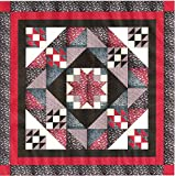Easy Quilt Star Medallion Red/Black/White Paisley/Queen/EXPEDITED SHIPPING