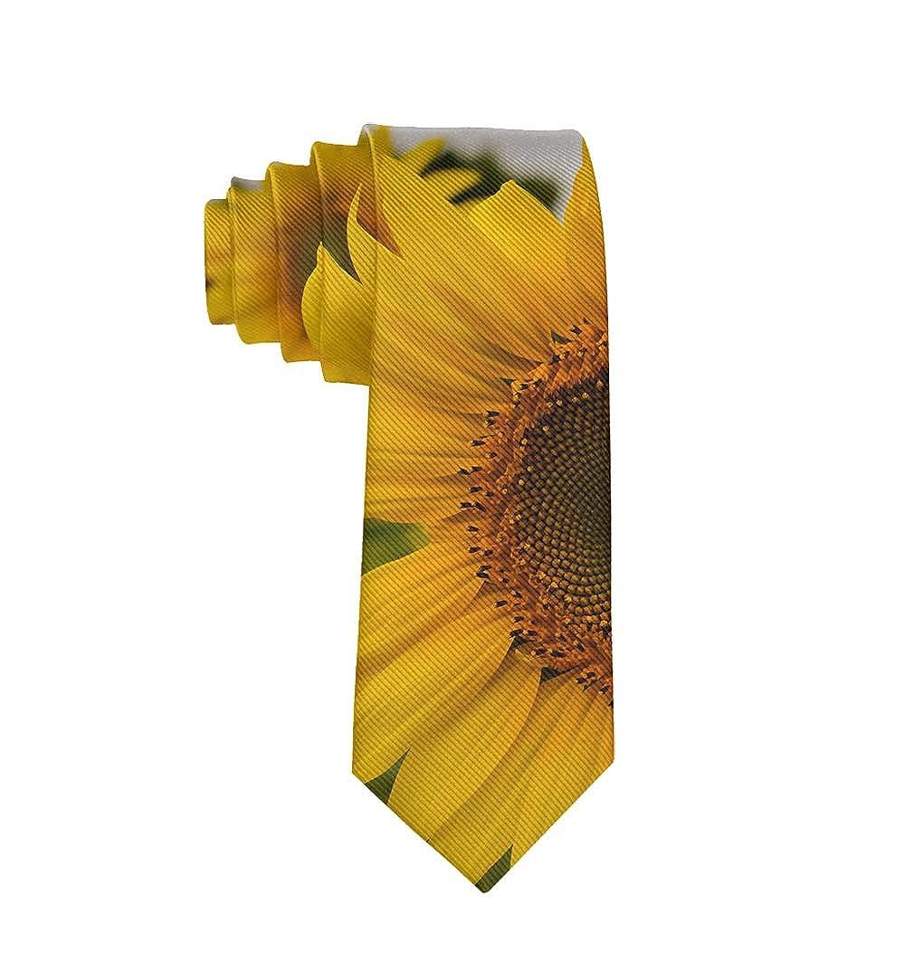 Casual Mens Tie Necktie Gift Skinny Neckties Skinny Long Ties for Meeting