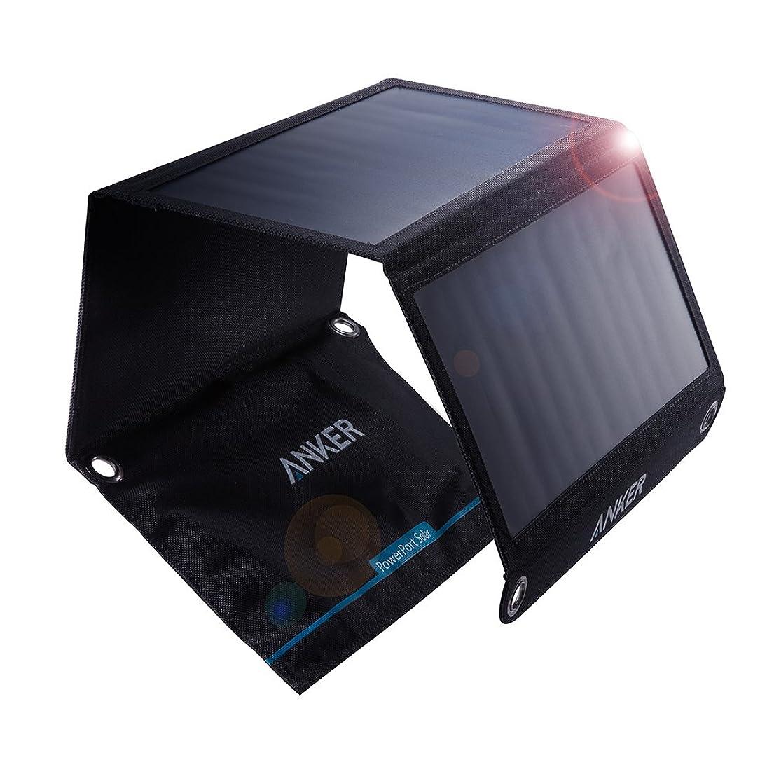 さておきクレジットサイレンRAVPower カーチャージャー シガーソケット USB 車載充電器 【2ポート/24W/12V?24V車/急速充電】 iPhone/iPad/Android/IQOS 等対応 RP-VC006 ブラック